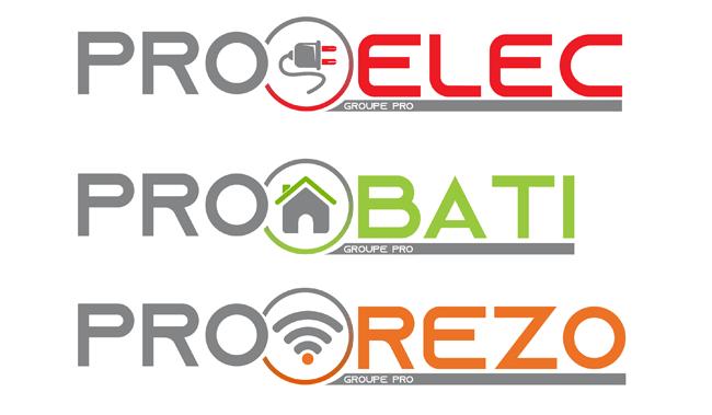 logo et charte graphique groupe pro